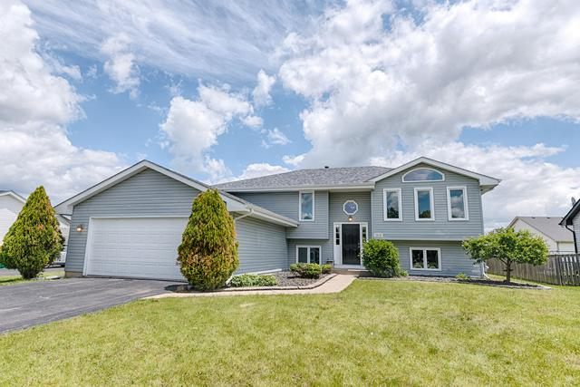 2010 Hastings Drive, Plainfield, IL 60586 (MLS #10417877) :: The Dena Furlow Team - Keller Williams Realty