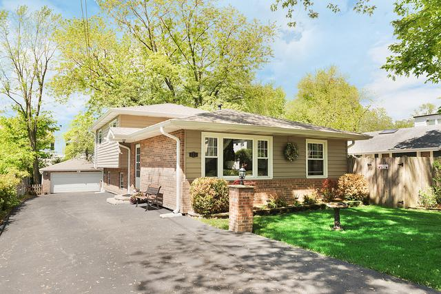 222 Willard Place, Westmont, IL 60559 (MLS #10418117) :: Domain Realty