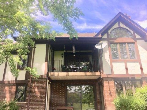6645 W 180 Street 2W, Tinley Park, IL 60477 (MLS #10418199) :: The Wexler Group at Keller Williams Preferred Realty