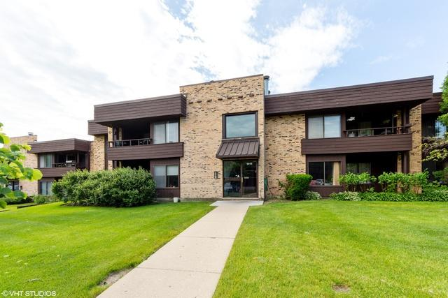 1411 N Sterling Avenue #204, Palatine, IL 60067 (MLS #10418225) :: The Jacobs Group