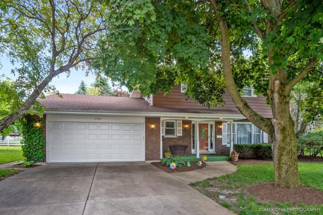 2308 Coach And Surrey Lane, Aurora, IL 60506 (MLS #10418291) :: The Perotti Group | Compass Real Estate