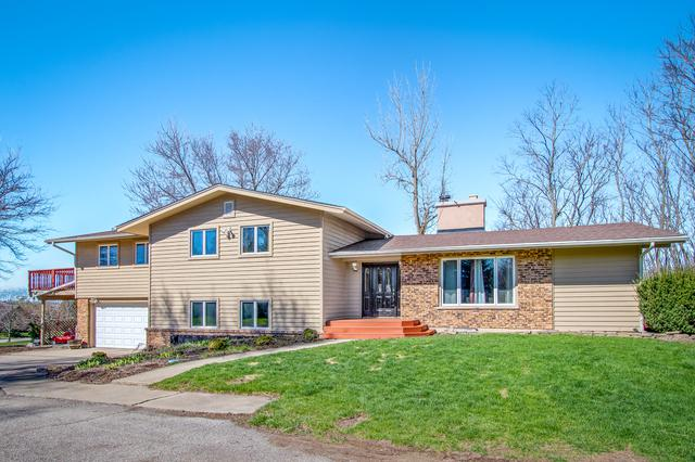9217 Bard Road, Lakewood, IL 60014 (MLS #10418325) :: The Dena Furlow Team - Keller Williams Realty