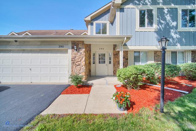 390 Springlake Lane C, Aurora, IL 60504 (MLS #10418332) :: The Perotti Group | Compass Real Estate