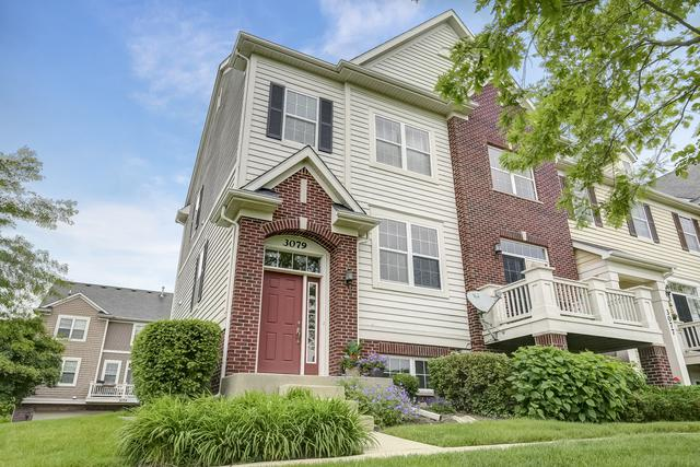 3079 Marion Street, Elgin, IL 60124 (MLS #10418400) :: Property Consultants Realty
