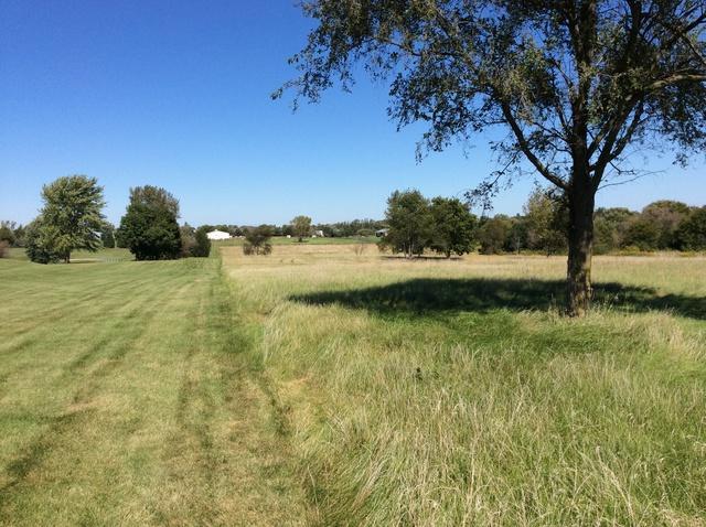 1925 Johnson Road, Oswego, IL 60543 (MLS #10418441) :: John Lyons Real Estate