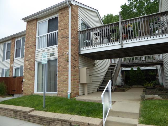 1978 Kenilworth Circle D, Hoffman Estates, IL 60169 (MLS #10418548) :: Angela Walker Homes Real Estate Group