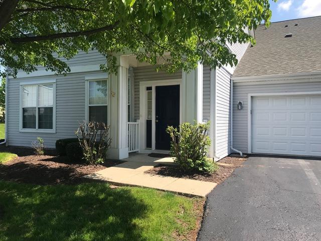215 Grays Drive #215, Oswego, IL 60543 (MLS #10418636) :: John Lyons Real Estate