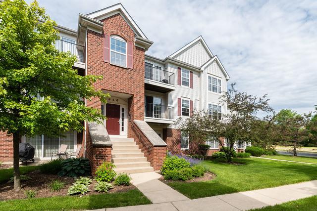 640 Mill Circle #204, Wheeling, IL 60090 (MLS #10418771) :: Helen Oliveri Real Estate