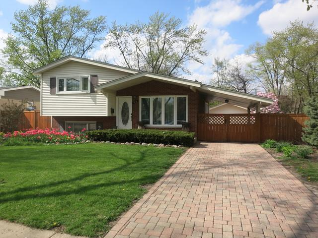 816 W Morris Avenue, Addison, IL 60101 (MLS #10418836) :: John Lyons Real Estate