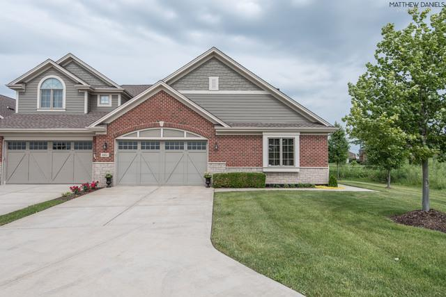 8851 Indiana Harbor Drive, Frankfort, IL 60423 (MLS #10419043) :: The Wexler Group at Keller Williams Preferred Realty