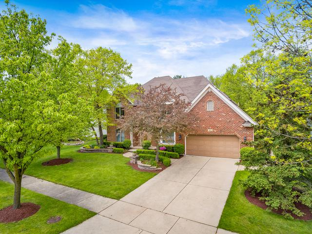 919 Rock Spring Road, Naperville, IL 60565 (MLS #10419150) :: Property Consultants Realty