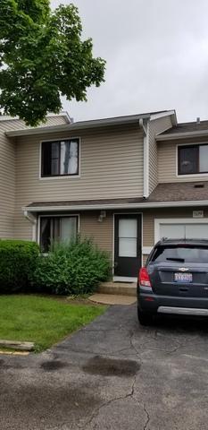 1129 E Randville Drive, Palatine, IL 60074 (MLS #10419423) :: The Jacobs Group