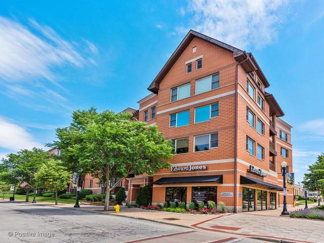 930 Curtiss Street #109, Downers Grove, IL 60515 (MLS #10419484) :: The Wexler Group at Keller Williams Preferred Realty