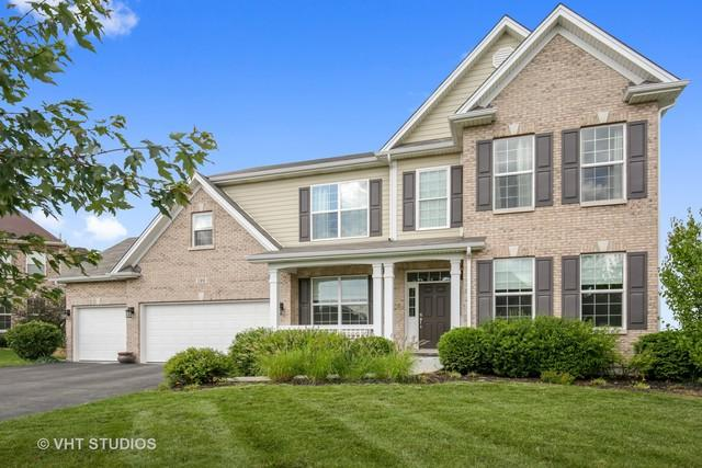 189 Trumpet Vine Circle, Elgin, IL 60124 (MLS #10419559) :: BNRealty