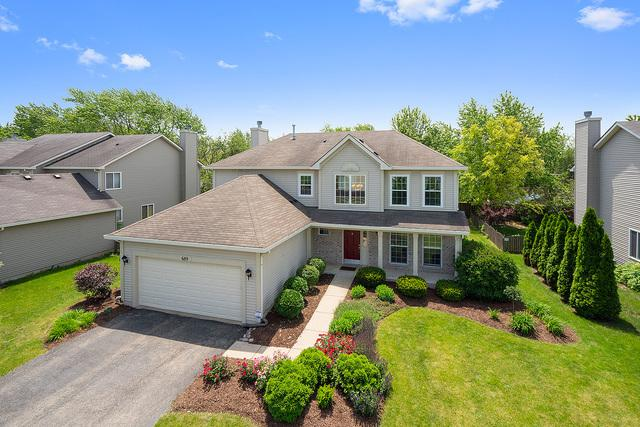 689 W Briarcliff Road, Bolingbrook, IL 60440 (MLS #10419762) :: The Wexler Group at Keller Williams Preferred Realty