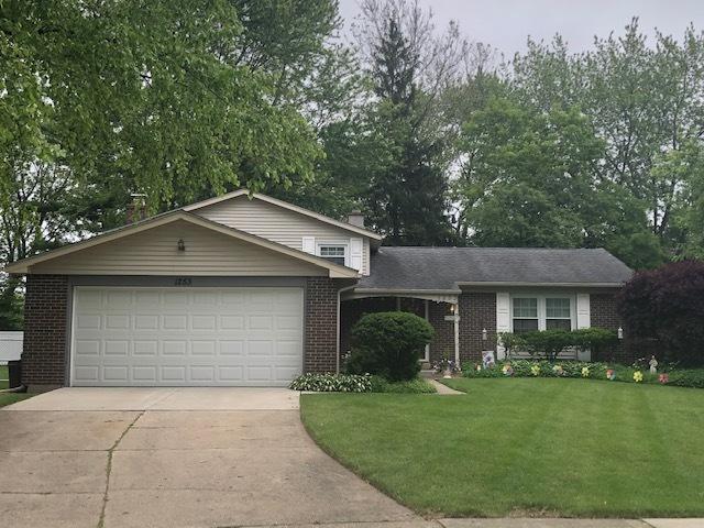 1253 Selwyn Lane, Buffalo Grove, IL 60089 (MLS #10419935) :: Helen Oliveri Real Estate