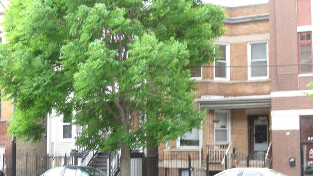 3744 N Ashland Avenue, Chicago, IL 60613 (MLS #10419982) :: Property Consultants Realty