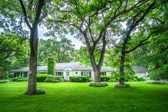 251 Woodland Drive, North Barrington, IL 60010 (MLS #10420015) :: Helen Oliveri Real Estate