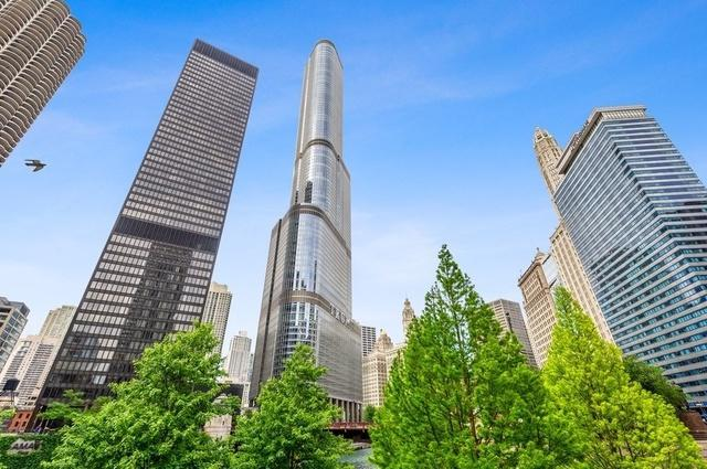 401 N Wabash Avenue 40L, Chicago, IL 60611 (MLS #10420016) :: Property Consultants Realty
