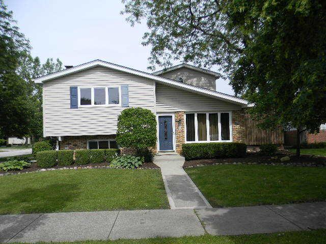 18041 65th Avenue, Tinley Park, IL 60477 (MLS #10420194) :: The Wexler Group at Keller Williams Preferred Realty