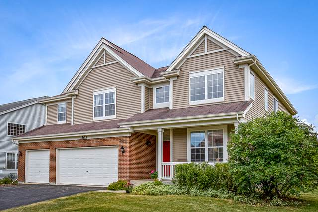 503 W Butterfield Lane, Round Lake, IL 60073 (MLS #10420455) :: Berkshire Hathaway HomeServices Snyder Real Estate
