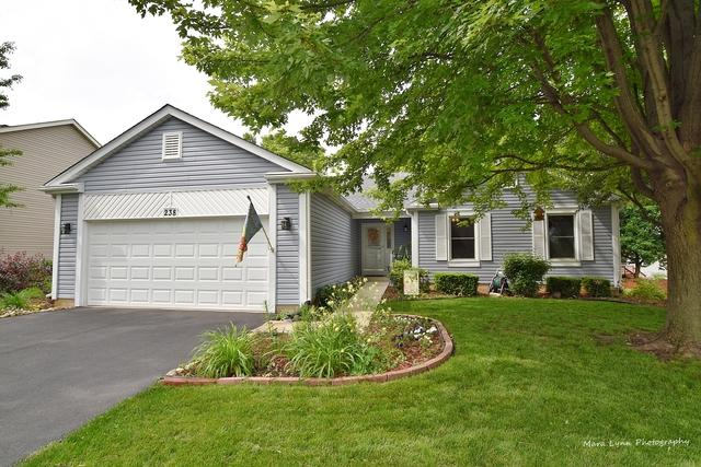 238 Mistwood Lane, North Aurora, IL 60542 (MLS #10420479) :: Property Consultants Realty