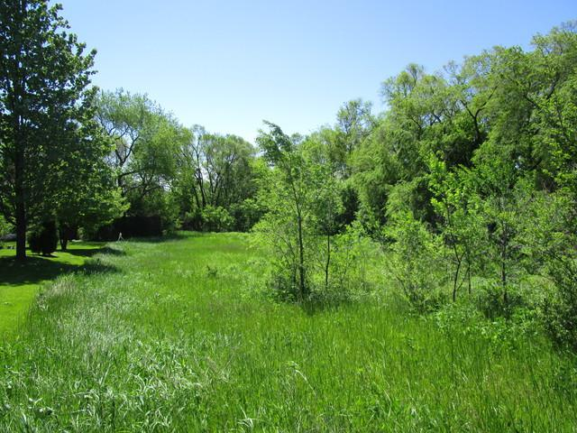 000 IL Route 176, Crystal Lake, IL 60014 (MLS #10420894) :: BNRealty