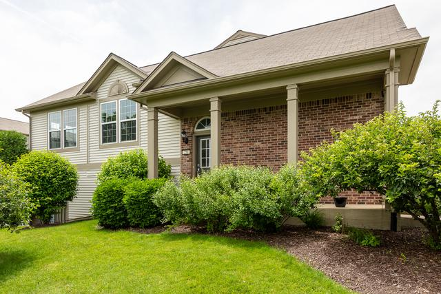 258 Devoe Drive #175, Oswego, IL 60543 (MLS #10421122) :: John Lyons Real Estate