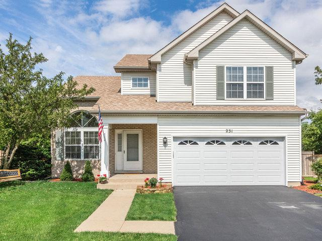 231 Alexandra Court, North Aurora, IL 60542 (MLS #10421267) :: Property Consultants Realty