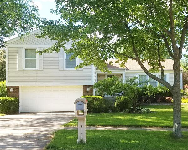 909 Chaucer Way, Buffalo Grove, IL 60089 (MLS #10421417) :: Helen Oliveri Real Estate