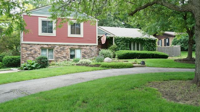 205 Oakmont Drive, Elgin, IL 60123 (MLS #10421519) :: BNRealty
