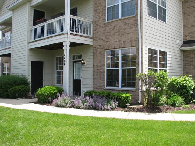 4498 Timber Ridge Court #4498, Joliet, IL 60431 (MLS #10421959) :: Property Consultants Realty