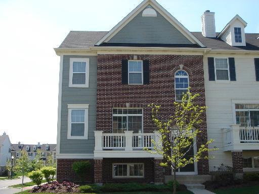 163 Goldenhill Street, Carol Stream, IL 60188 (MLS #10422315) :: The Dena Furlow Team - Keller Williams Realty