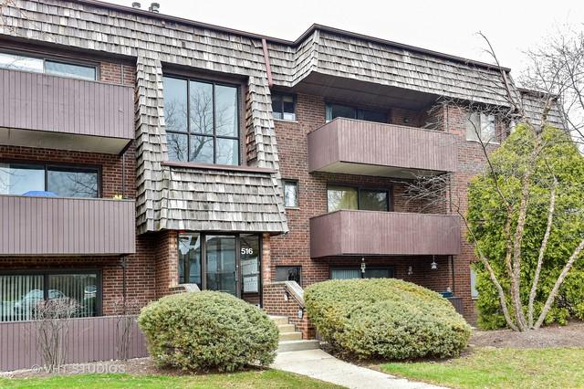 516 Timber Ridge Drive #308, Carol Stream, IL 60188 (MLS #10422414) :: John Lyons Real Estate