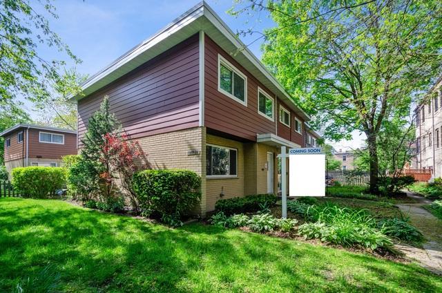 1217 Mulford Street #1, Evanston, IL 60202 (MLS #10422582) :: BNRealty