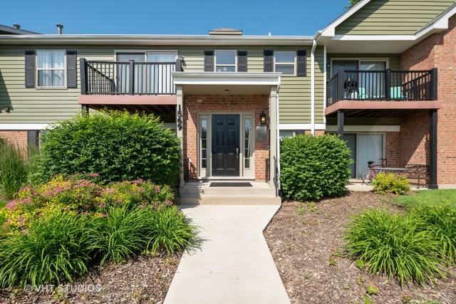 1569 Raymond Drive #101, Naperville, IL 60563 (MLS #10422609) :: Berkshire Hathaway HomeServices Snyder Real Estate