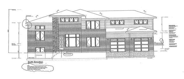 815 S Kearsage Avenue, Elmhurst, IL 60126 (MLS #10422710) :: Ryan Dallas Real Estate