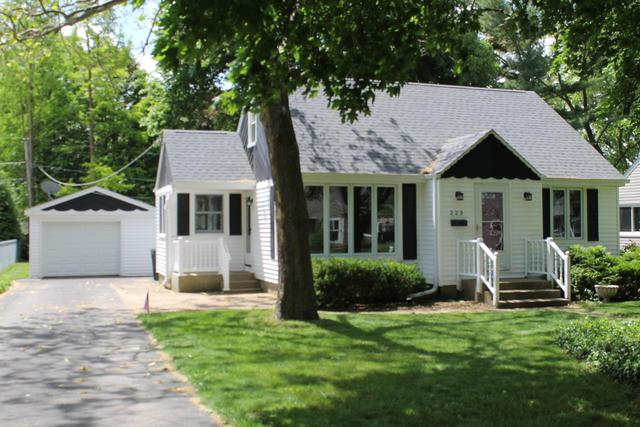 223 Pearl Street, Cary, IL 60013 (MLS #10423186) :: Baz Realty Network | Keller Williams Elite