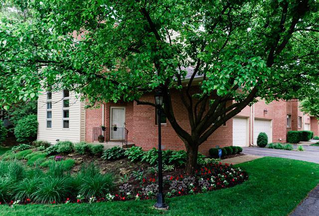 1748 Melise Drive, Glenview, IL 60025 (MLS #10423204) :: Ryan Dallas Real Estate