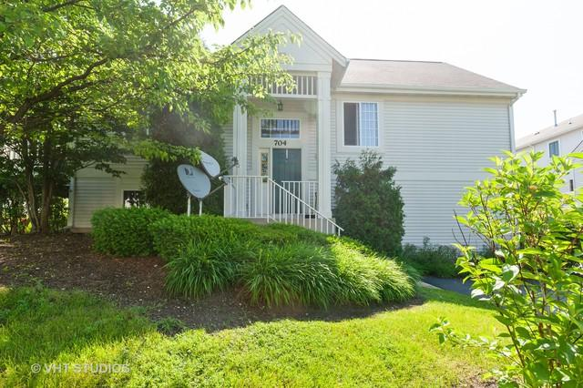 704 S Rosehall Lane #0, Round Lake, IL 60073 (MLS #10423425) :: The Wexler Group at Keller Williams Preferred Realty