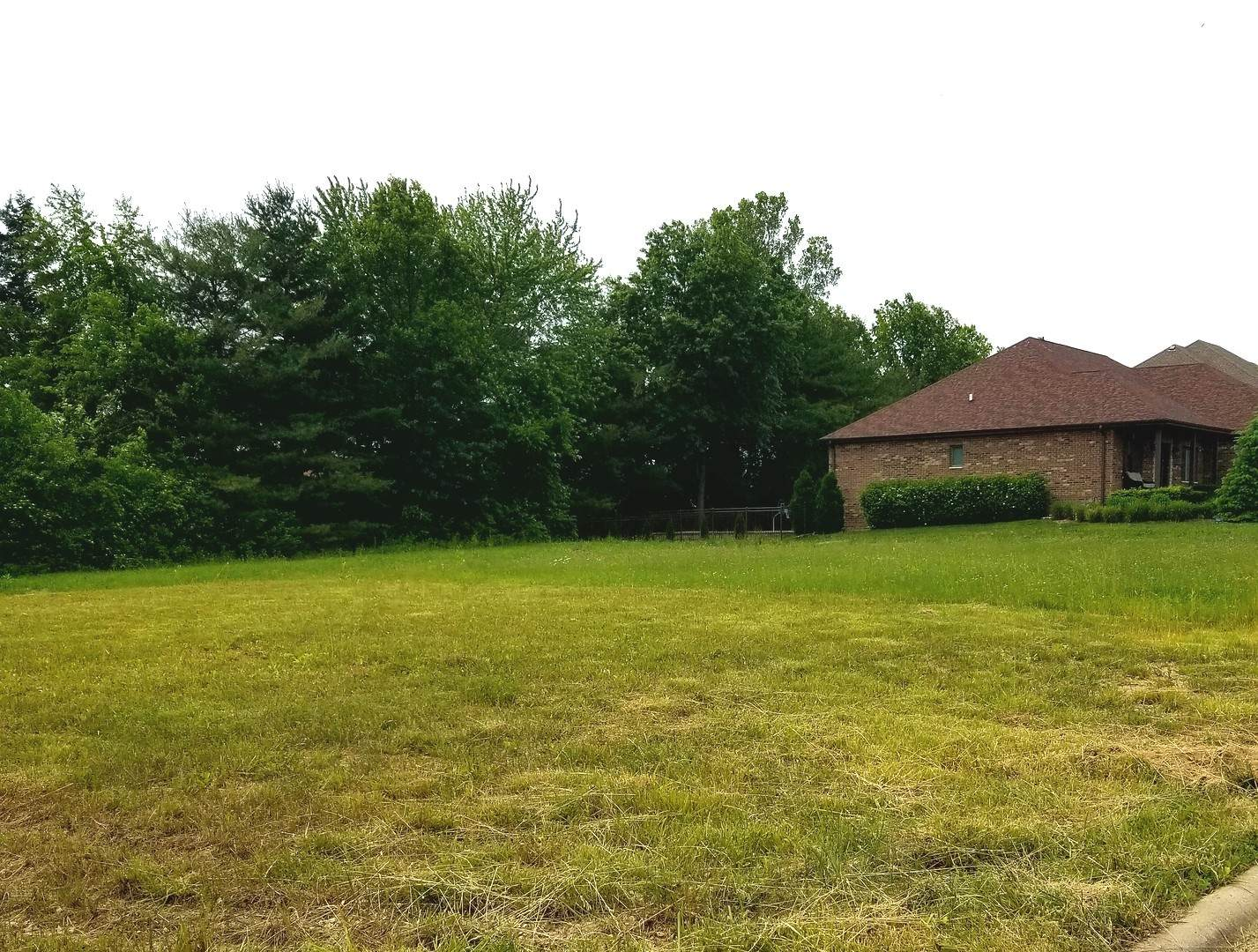 20426 Grand Traverse Drive, Frankfort, IL 60423 (MLS #10423440) :: Century 21 Affiliated