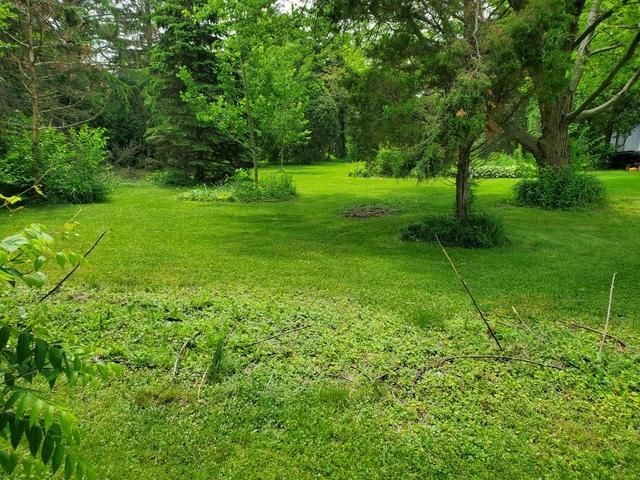 2425 Maple Avenue, Downers Grove, IL 60515 (MLS #10423446) :: Ryan Dallas Real Estate