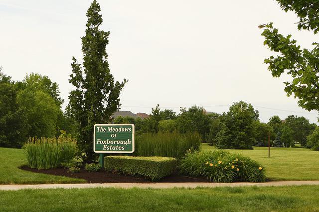 19857 Foxborough Drive, Mokena, IL 60448 (MLS #10423823) :: Angela Walker Homes Real Estate Group