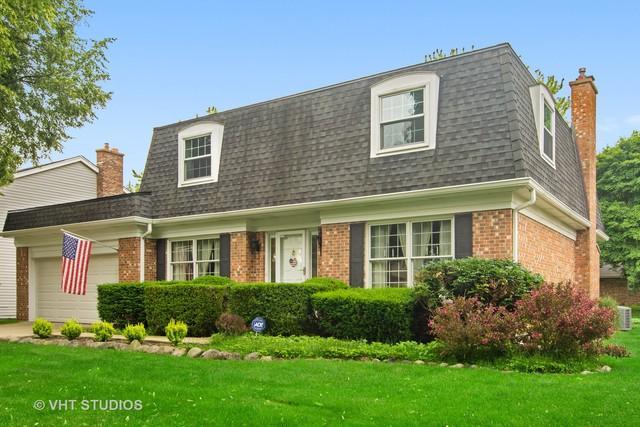 661 E Balsam Lane, Palatine, IL 60074 (MLS #10424206) :: Ani Real Estate