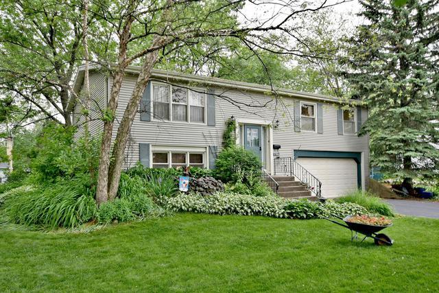 4520 Blackhawk Lane, Lisle, IL 60532 (MLS #10424679) :: Berkshire Hathaway HomeServices Snyder Real Estate