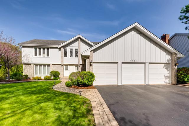 5061 N Tamarack Drive, Hoffman Estates, IL 60010 (MLS #10424697) :: Ani Real Estate