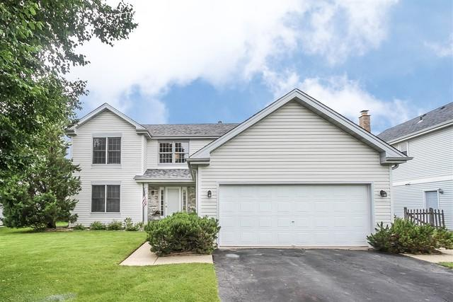 409 Indian Ridge Trail, Wauconda, IL 60084 (MLS #10425637) :: Ryan Dallas Real Estate