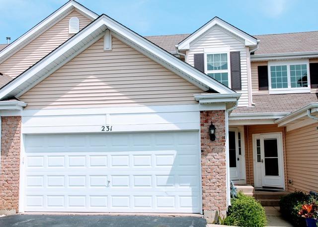 231 Macintosh Avenue, Woodstock, IL 60098 (MLS #10425753) :: Lewke Partners