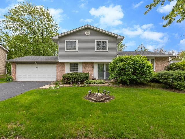 417 Liberty Drive, Bolingbrook, IL 60440 (MLS #10425759) :: Ani Real Estate