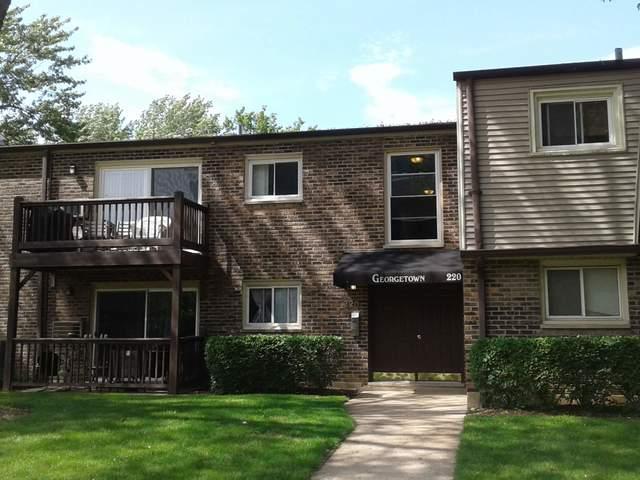 220 W Colfax Street #103, Palatine, IL 60067 (MLS #10426670) :: Ani Real Estate